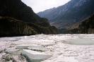 Ледяной Аргут