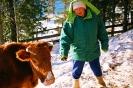 Оксанина корова